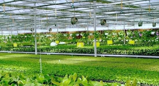 多种传感器技术在农业物联网中的应用