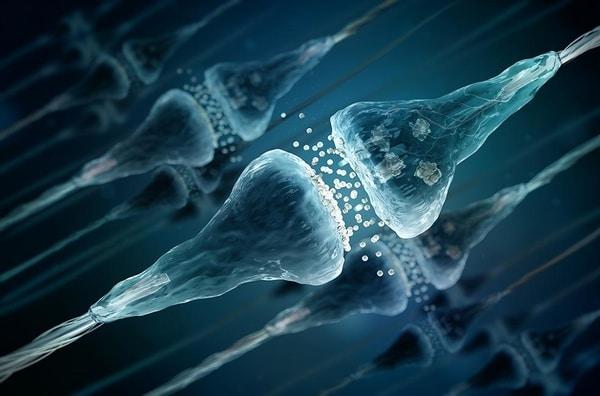 Neurotransmitters_ETO.jpg