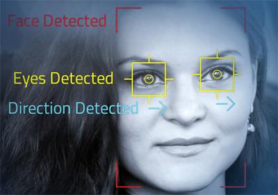 OVTdetectionM.jpg