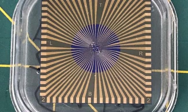 该传感器只有微型USB驱动器的大小,能够同时测试流感和COVID-19。.jpg