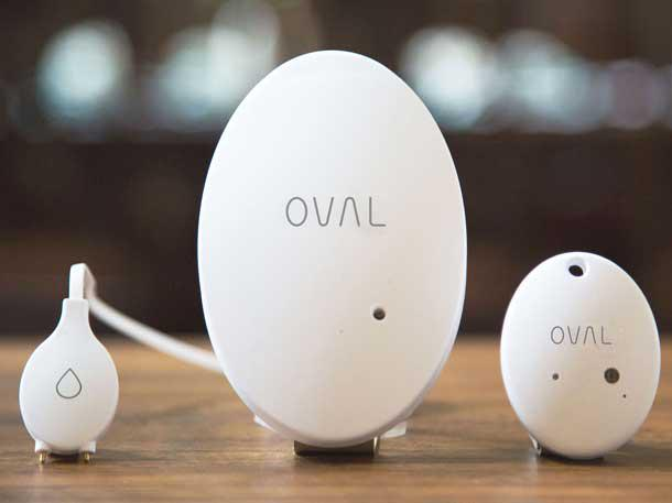 oval_product_lineup.jpg