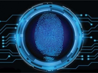 指纹识别中的传感器