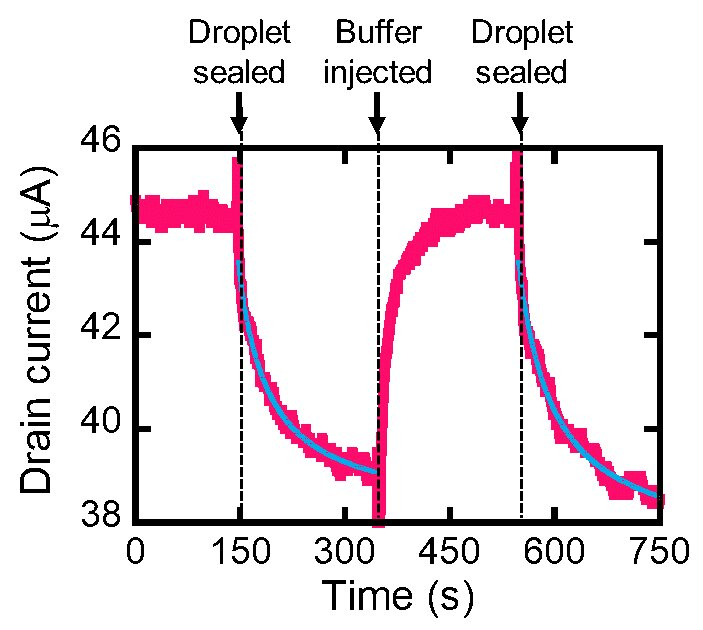 石墨烯和微小液滴建立的生物传感器 可检测胃癌致病菌
