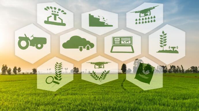 传感器技术在以色列精准农业开发的应用案例