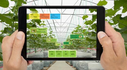 日本公司用新型传感器对农业土壤和水环境进行监测