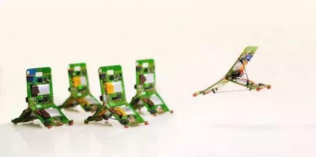 国外研发史上最小、拥有多种运动能力的仿生蚂蚁机器人