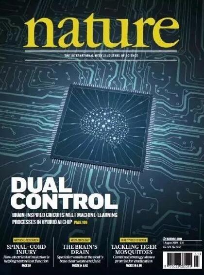 这颗国产人工智能芯片登上全球顶级杂志封面