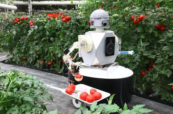 我国农业机器人的发展概况及面临的研发难题