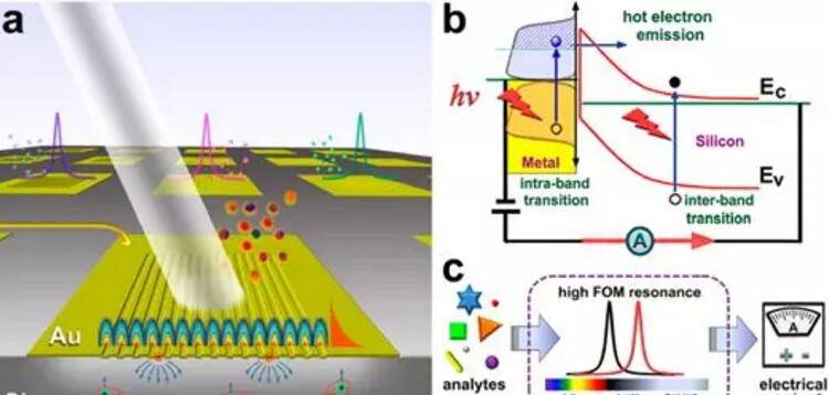 国内研发可独立工作的新型便携式光学传感器