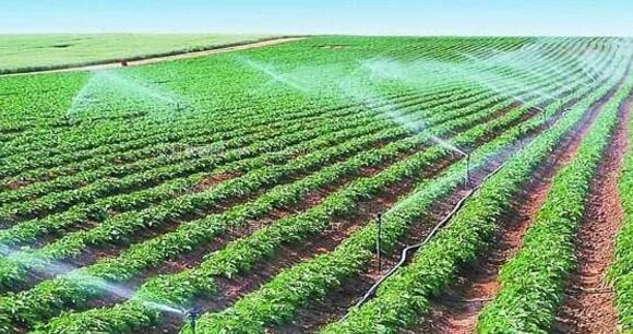 物联网技术在国内智慧农业和渔业中的应用案例