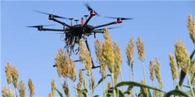 普渡大学获得900万美元开发遥感技术 用于远程植物数据收集