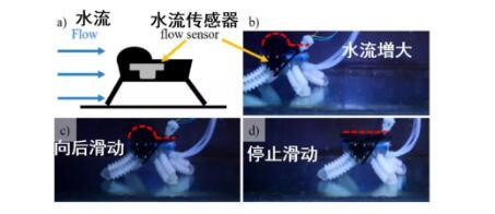 搭载有水流传感器的软体水下机器人