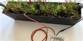 首个植物供电的物联网传感器成功将数据传送到太空