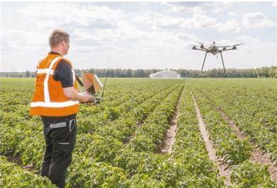 传感器技术助荷兰农场实现精准农业