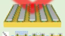 具有高灵敏度的纳米光子传感器,可被动捕获热点中的分析物分子